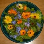 Blüten Salat